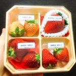 苺のプレゼント